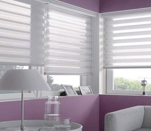 ZEBRA BLINDS 1
